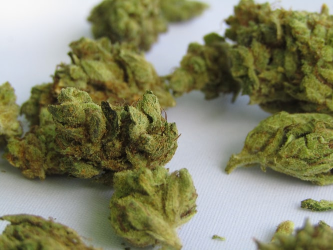 Bill-To-Legalize-Marijuana-Sales-Heads-To-Vermont-House-Floor-Following-Key-Committee-Vote